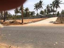 Premium plots for sale near to rajankunte