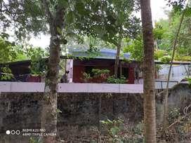 HOUSE FOR SALE NEAR NH66 KALLUVATHIKAL