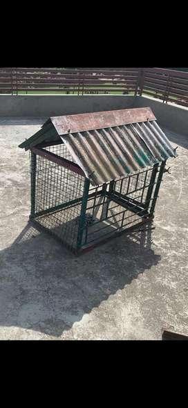 Dog House metal