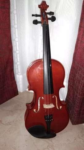 Violin kaps's companys