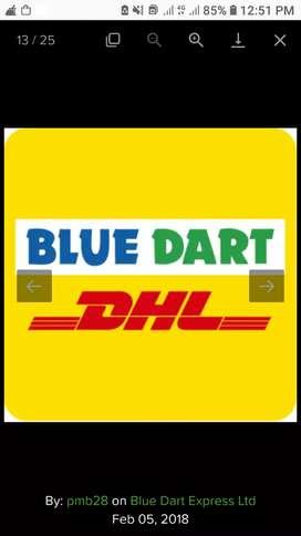 Blue dart delivery boy