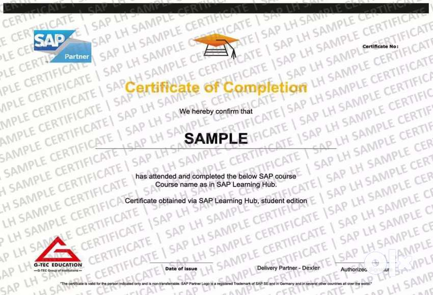 SAP Learning certification at affordable rate. 0