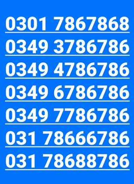 Golden Islamic Number (786, 5121472)