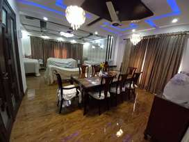 She 2 kanal 10 beds daily .weekly rent z block book now