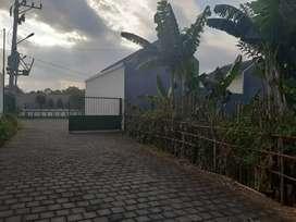 Tanah Bagus Murah Lingkungan Nyaman Goa Gong Ungasan Bali