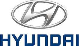 Hyundai Company Fresher and experience candidates requirement for work