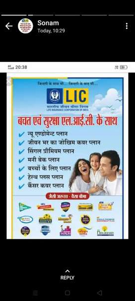 LIC all service