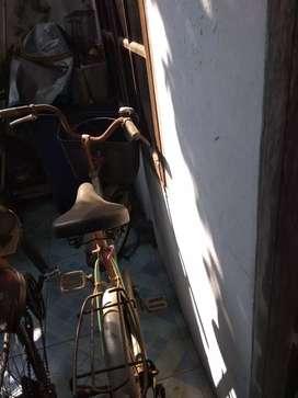 Sepeda keranjang warna hijau
