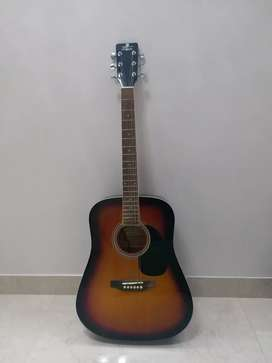 Pluto Electro Acoustic guitar for sale