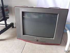 Tv maxreen 14 in