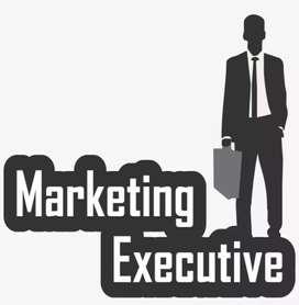 Telecom Sales Executive