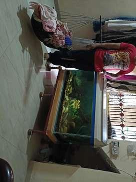 Fish aquarium      4 × 1.5 fit hieght. 2 fit
