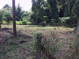 10 Cent House Plot Available for Sale in Alathur, Palakkad District
