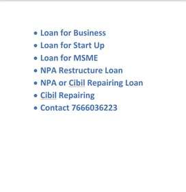 NPA or Cibil repairing ,  loan for factory