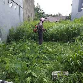 Jasa potong rumput