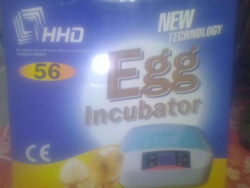 56 eggs incubator with candelight 0