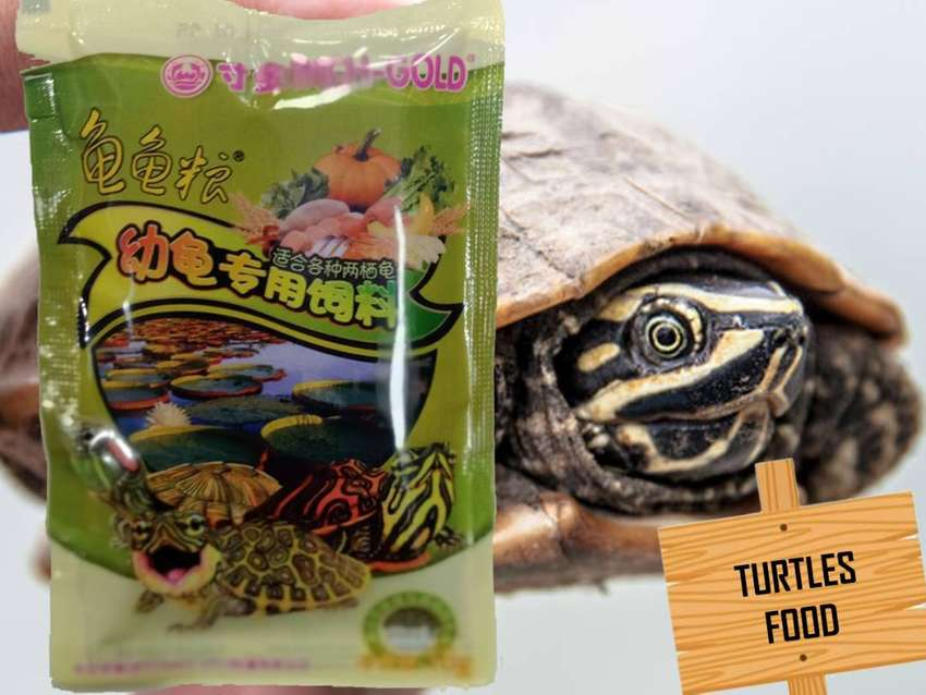 TURTLES FOOD - INCHE GOLD -  WEIGHT 16 GRAMS 0