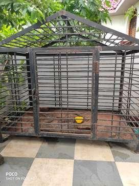 Iron dog caze