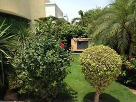 Furnished VIP Room on per day basis Guest House in Lahore