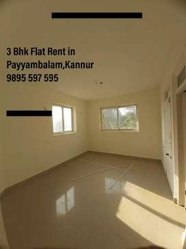 3 Bhk Flat Rent @ Payyambalam,Kannur
