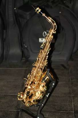Saxophone alto Dluxe