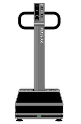 Vibration plate machine for quick weight loss and body fitness. OTO
