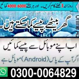 Online and office Jobs Male and female No age and education limit