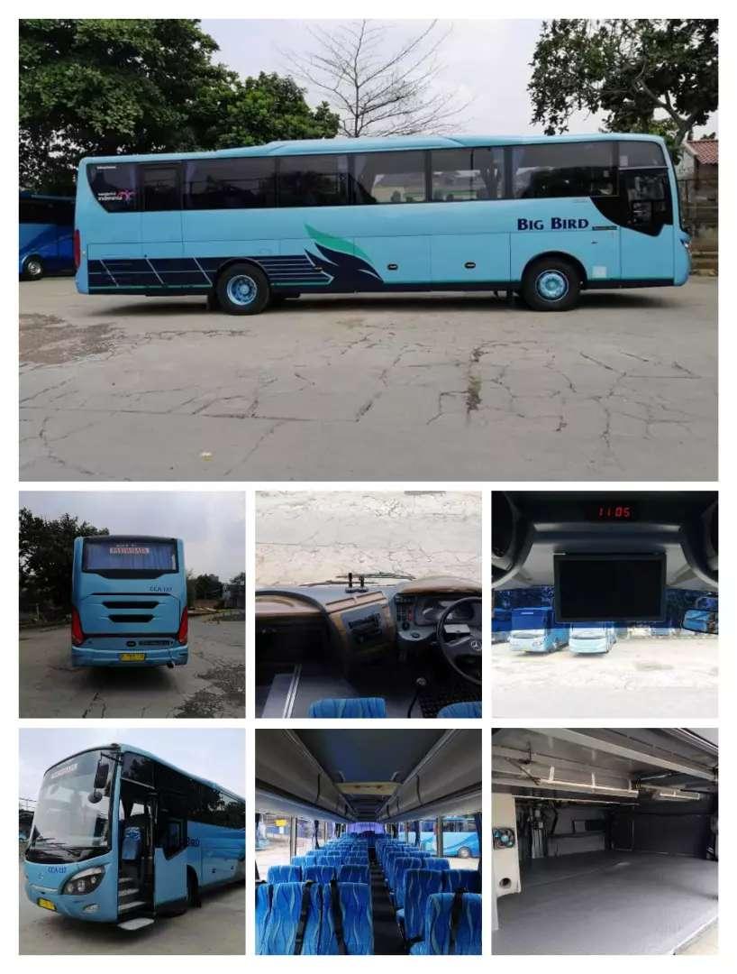 Big Bird Bus 2014 0