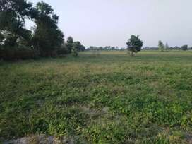 Agriculture Lands  For Sell