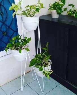 Standing pot minimalis