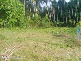 Tanah dijual Cepat Blok A11