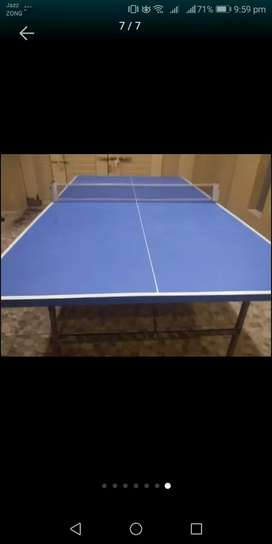 New Table tennis with net and rackets