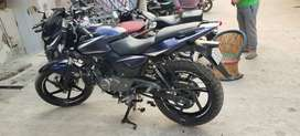 Pulsar  royal blue completely new