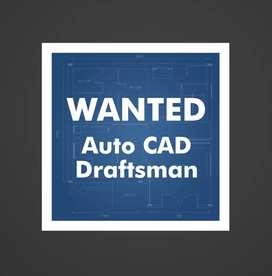 Auto CAD  draftsman