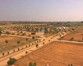 only 36 rs sf me business farm land sell karna hi