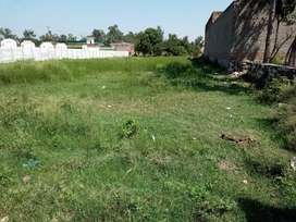 I want to sell my 29 Marla plot near wapda town behind petrol pump