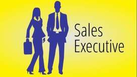 Hiring For Real Estate Sales Executive Req. Minimum 1Yr Experience