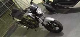 Tiger revo 2006