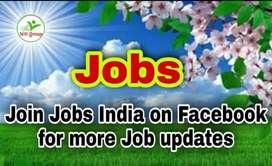 Delivery boys Jobs in Delhi 2