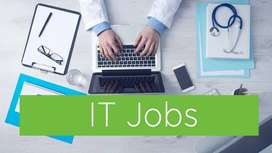 IT JOBs on All Branches