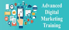 Digital Marketing Training(Online Course) with Placement.