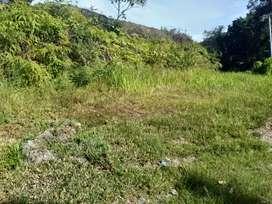 Tanah kavlingan di pinggir jalan lintas, cocok untuk investasi