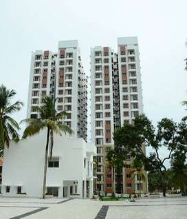 3 BHK bath attached confident avior flat  direct from owner