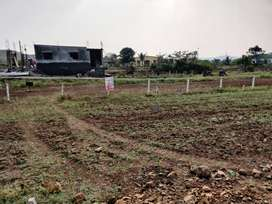 Limited plots are available