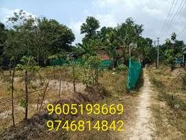 5.5 cent Thazhuthala 1 km Car site