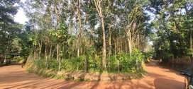 64Cent plot near kottarakara