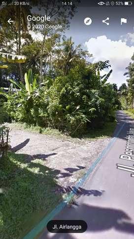 Tanah luasnya 1 hektar dijual segera dengan harga 15. 000.000/ are