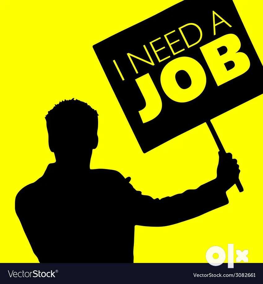 I need part time accountant job