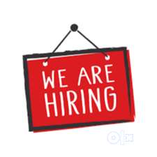 wanted immed -software professional python