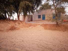 5 kenal 17 marlah for sale on main road (146 *220) 146 on road6